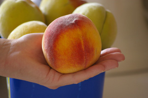 THE BIGGEST PEACH JAN 2013
